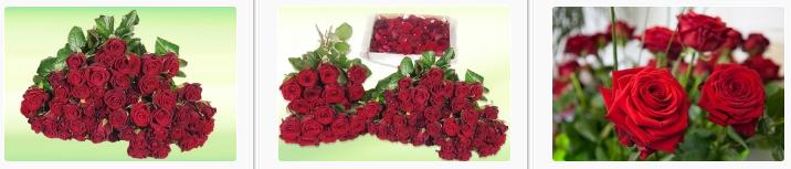 Schnelle lieferung bei Rosenbote
